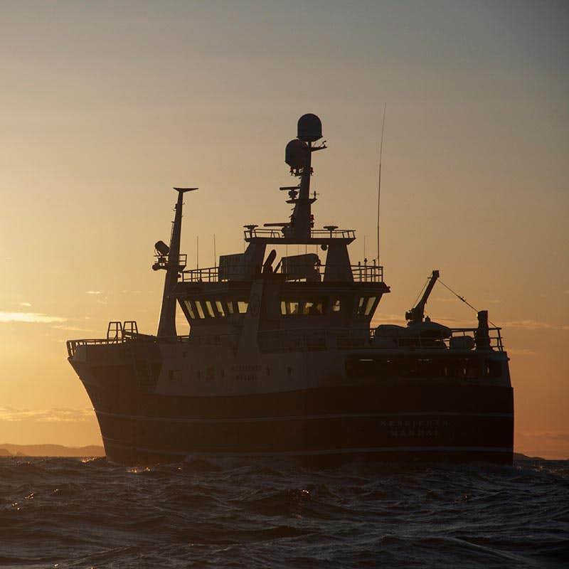 LED lys til båt og marine. Hvordan velge gode lyskastere?